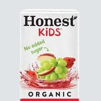 Wendy's Honest Kids Fruit Punch